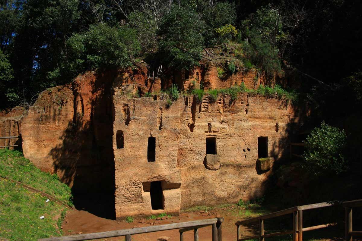 Agriturismo vicino al Parco archeologico di Populonia e Baratti